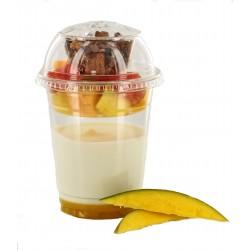 Yogourt avec fruits frais et coulis mangue